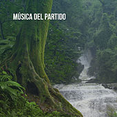 Música del partido by Various Artists