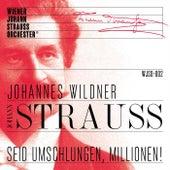 Seid umschlungen Millionen! de The Vienna Johann Strauss Orchestra