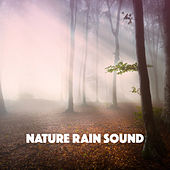 Nature Rain Sound by Various Artists