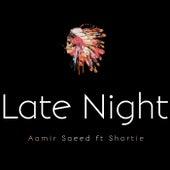 Late Night von Aamir Saeed
