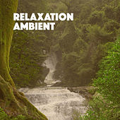 Relaxation Ambient by Various Artists