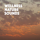 Wellness Nature Sounds by Various Artists
