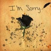 I'm Sorry (Let U Dwn Remix) von Hi-Rez