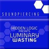 Wasting von Hidden Logic