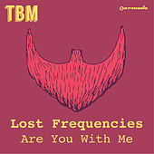 Are You With Me von Lost Frequencies