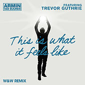This Is What It Feels Like (W&W Remix) von Armin Van Buuren