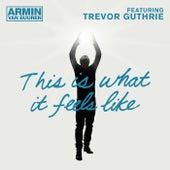 This Is What It Feels Like von Armin Van Buuren