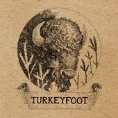 Turkeyfoot by Turkeyfoot