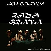 Raza Brava de Los Calvos
