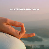 Relaxation & Meditation by Various Artists
