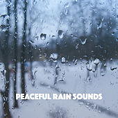 Peaceful Rain Sounds by Various Artists