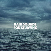 Rain Sounds For Studying by Various Artists