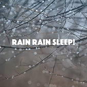 Rain Rain Sleep! by Various Artists