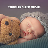 Toddler Sleep Music de Various Artists