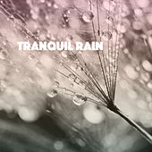 Tranquil Rain by Various Artists