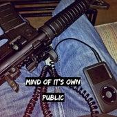 Mind of It's Own von The Public