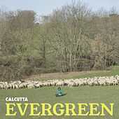 Evergreen by Calcutta