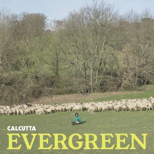 Evergreen di Calcutta