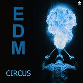 EDM Circus by Various Artists