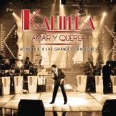 Amar y Querer (Homenaje a Las Grandes Canciones) de Kalimba
