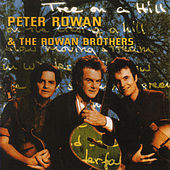 Tree On A Hill by Peter Rowan