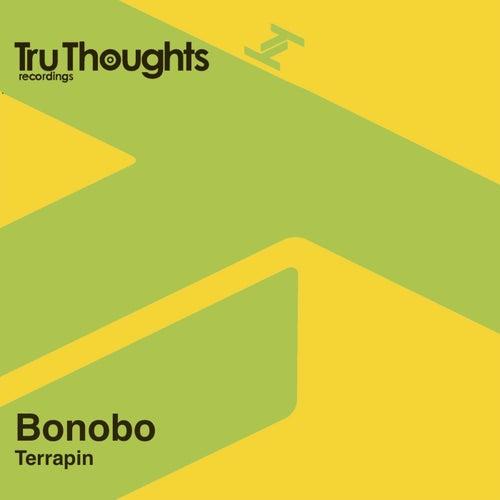 Terrapin by Bonobo