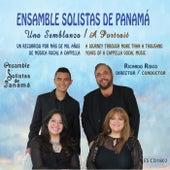 Una Semblanza / A Portrait de Ensamble Solistas De Panama