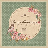 Raw Grooves by Various Artists