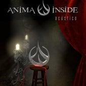 Reflection (Acoustic Live) de Anima Inside