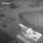 Shimmer and Disappear by Pram