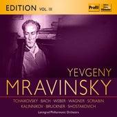 Evgeny Mravinsky, Vol. 3 by Various Artists
