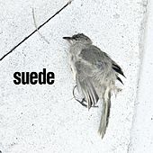 The Invisibles by Suede