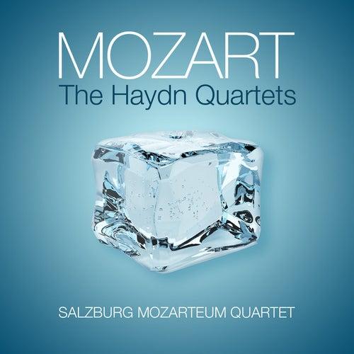 Mozart: The Haydn Quartets by Salzburg Mozarteum Quartet