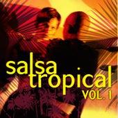 Salsa Tropical Vol.1 by Emerson Ensamble