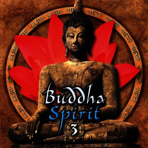 Buddha Spirit 3 by Anael