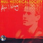 Am I Wrong (Part 1) de Mull Historical Society
