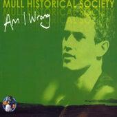 Am I Wrong (Part 2) de Mull Historical Society