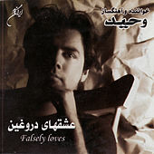 Falsely Loves by Vahid
