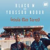 Gainde (Les Lions) von Black M