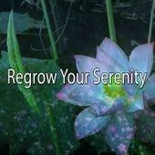 Regrow Your Serenity von Entspannungsmusik