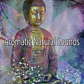 Aromatic Natural Sounds von Massage Therapy Music