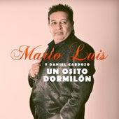 Un Osito Dormilón by Mario Luis