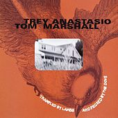 Trampled by Lambs and Pecked by the Dove by Trey Anastasio