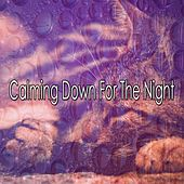 Calming Down For The Night by Nature Sound Series