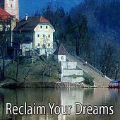 Reclaim Your Dreams by Lullaby Land