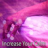 Increase Your Calm de Zen Meditation and Natural White Noise and New Age Deep Massage