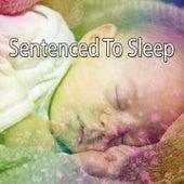 Sentenced To Sleep by Baby Sleep Sleep