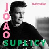 Elvis'n Bossa van João Suplicy