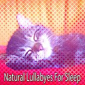 Natural Lullabyes For Sleep de Sounds Of Nature