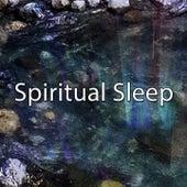 Spiritual Sleep de Ocean Sounds Collection (1)